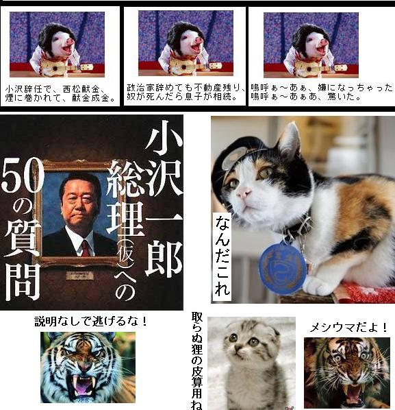 minshuozawataijinbanzai1.jpg