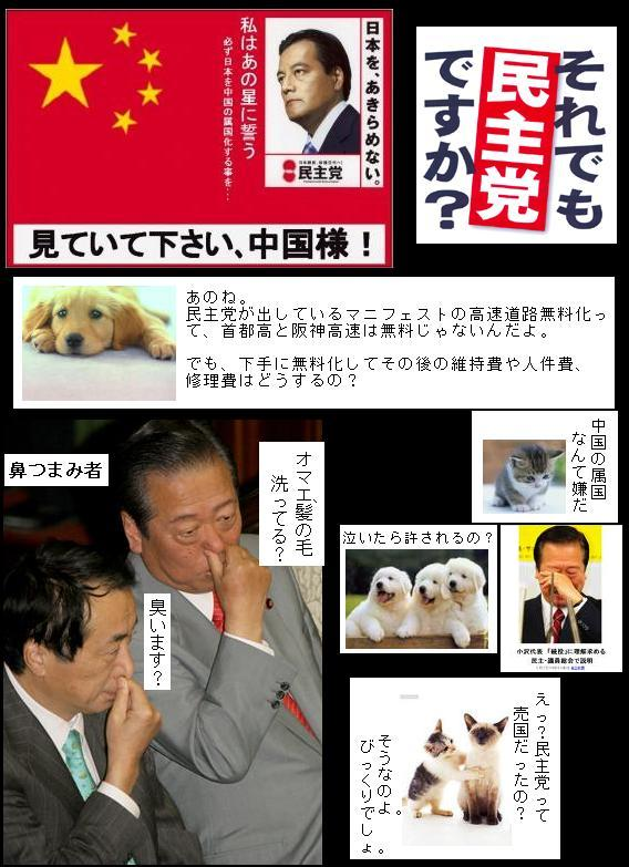 minshutouwazainichinoseitoudayon.jpg