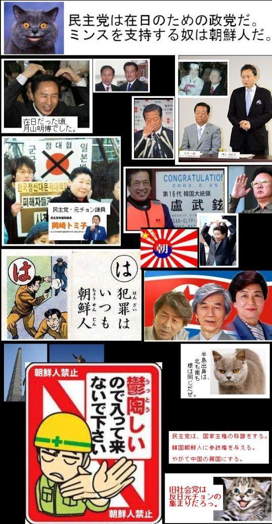 minshuzainichiseitoozawakailai1.jpg
