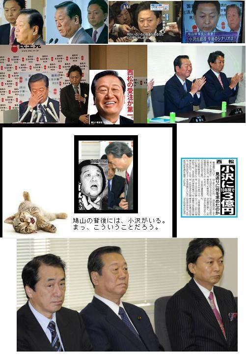ozawahatokairaiseiken1.jpg
