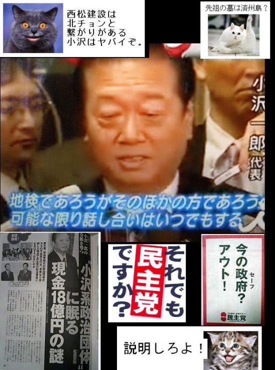 ozawahikyoumono10.jpg