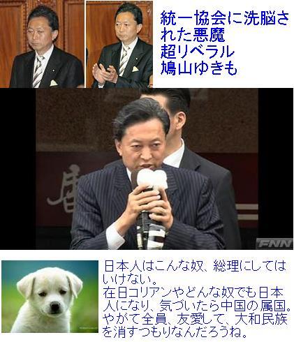popopopohatoyamakimoo1.jpg