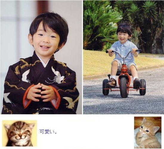 princehisahito1.jpg