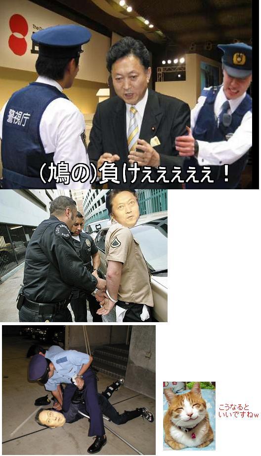taihohatoyama1.jpg