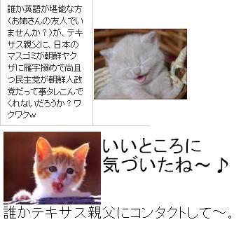 tekisasuoyaji1.jpg