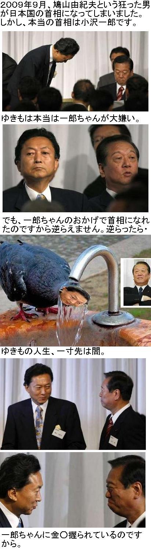 yukomoyabayaba1.jpg