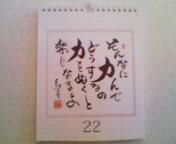 am_yoko.jpg