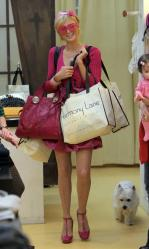 Paris Hilton - shopping at Harmony Lane a3