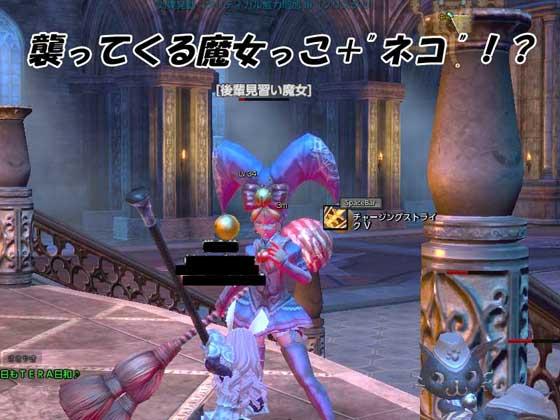 tera32.jpg
