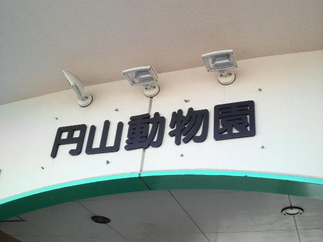 P1000151.jpg