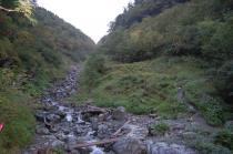 藪沢の河床