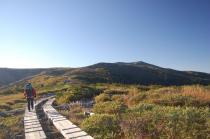 太郎平への登山道