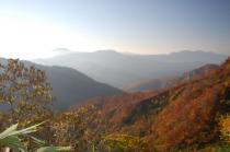 登山道から2