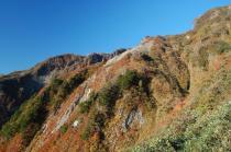 登山道から3.