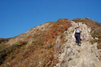 登山道から4