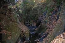 亀ヶ淵の竜神川