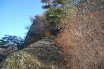 山頂直下の山道