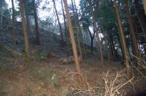 ケーブルカーの路線沿いの山道