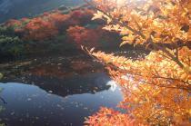 ひょうたん池から2