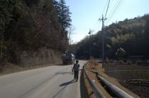 ダンプが通る県道を戻る