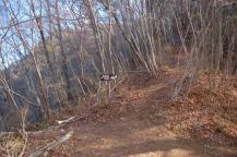 熊の山への山道2