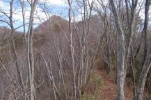 熊の山への山道3