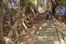 熊の山への山道5
