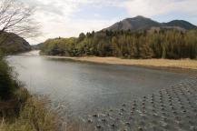 下小川橋からの盛金富士