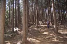 盛金富士山道