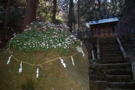 賀毘礼神社