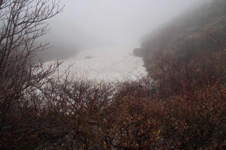 谷筋の雪渓