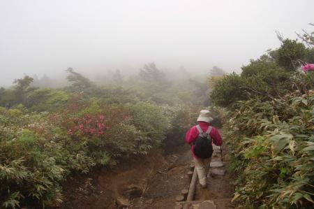 \薬師岳への登山道
