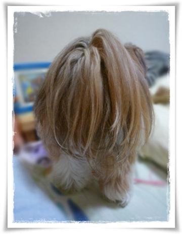 2008-0865.jpg