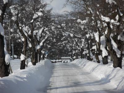s-雪の三内
