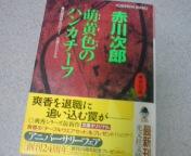 20080930214400.jpg