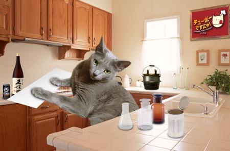味にゃ素キッチン3