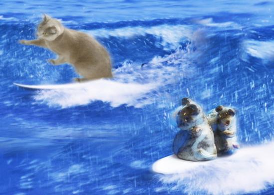 サーフィンジョニーみどり