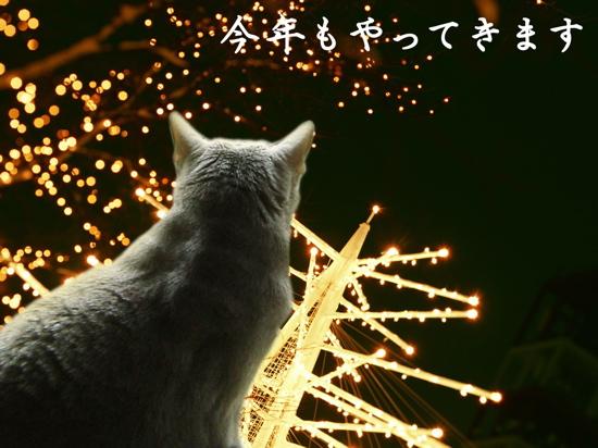 ユニャクロクリスマス1