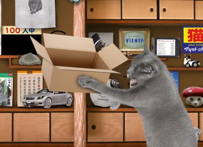 大掃除猫2