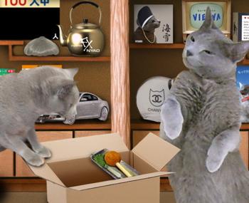 大掃除猫7