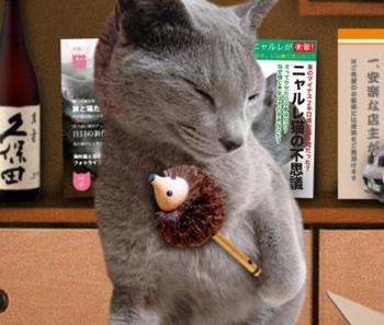 大掃除猫8