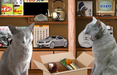 大掃除猫9