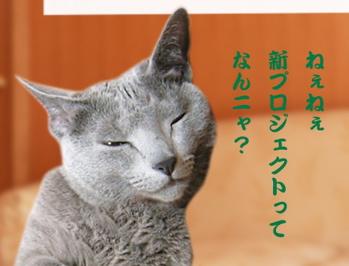 ディニャス猫の惑星5
