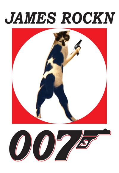 ディニャス猫の惑星20