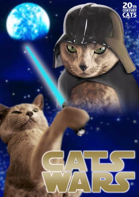 CAT WARSポスター