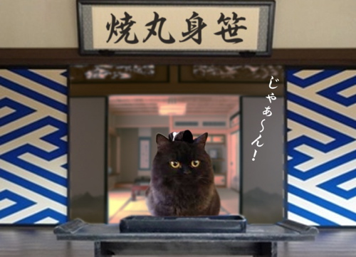 キンちゃん6