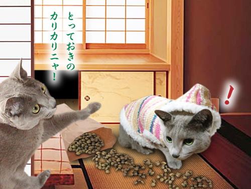 猫の恩返し14
