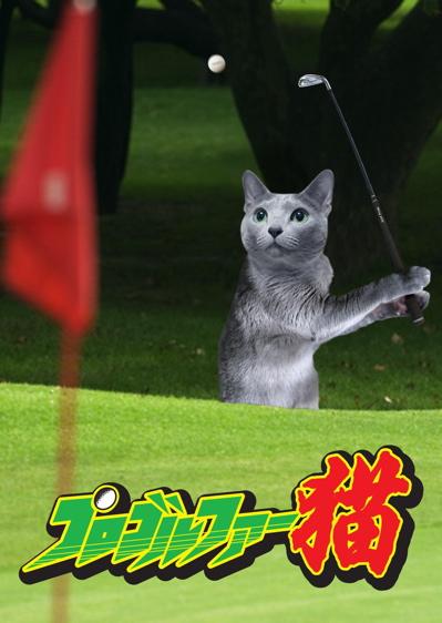 プロゴルファー猫