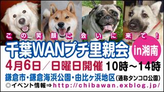 syonan_banner320x180.jpg