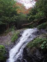 早い紅葉と6m滝68